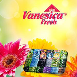 מפיצי ריח לרכב VANESICA
